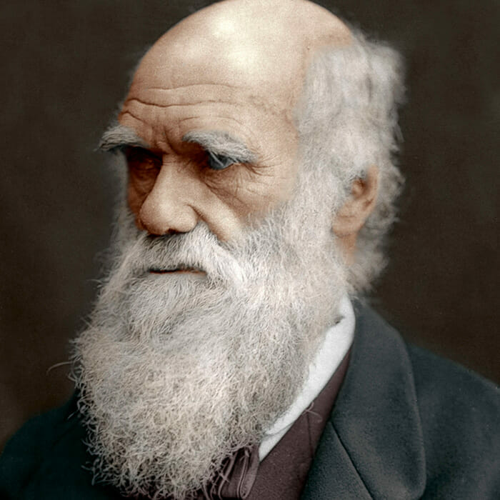 Darwin's Theory of Natural Rejection – Clarity Lab Issue 85